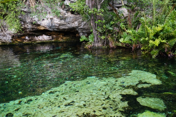 Carnets_de_Marine_Cenotes_Mexique
